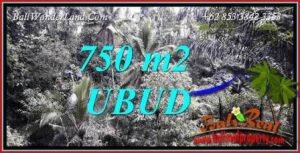 Beautiful Ubud Tampak Siring 750 m2 Land for sale TJUB742