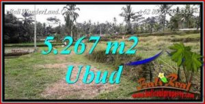 FOR sale Exotic Property Land in Ubud TJUB743