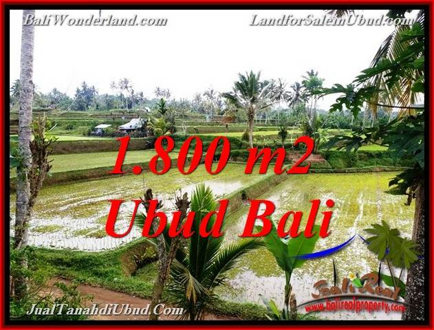 FOR SALE Beautiful 1,800 m2 LAND IN UBUD BALI TJUB769