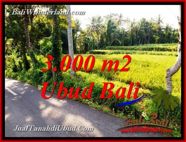 Beautiful PROPERTY LAND IN UBUD BALI FOR SALE TJUB771