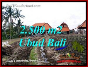 Beautiful PROPERTY 2,500 m2 LAND FOR SALE IN PEJENG UBUD BALI TJUB772