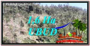 Affordable 16,000 m2 LAND SALE IN UBUD BALI TJUB748