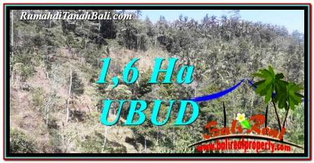 UBUD BALI 16,000 m2 LAND FOR SALE TJUB748