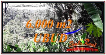 Exotic PROPERTY LAND IN UBUD BALI FOR SALE TJUB750