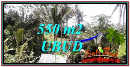 Beautiful 550 m2 LAND SALE IN Ubud Pejeng TJUB751