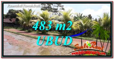 Beautiful PROPERTY 483 m2 LAND SALE IN Ubud Pejeng TJUB752