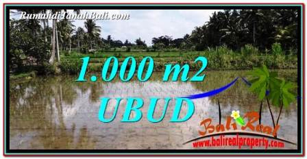 Beautiful PROPERTY 1,000 m2 LAND SALE IN Ubud Pejeng TJUB753