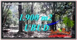 1,900 m2 LAND IN UBUD BALI FOR SALE TJUB755