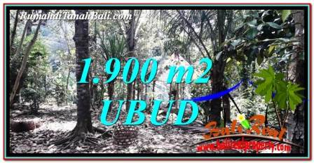 Beautiful PROPERTY LAND FOR SALE IN UBUD BALI TJUB755