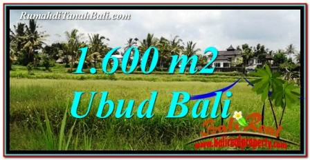 FOR SALE Affordable PROPERTY LAND IN UBUD TJUB756
