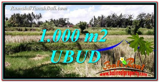 Magnificent 1,000 m2 LAND SALE IN Ubud Pejeng TJUB760