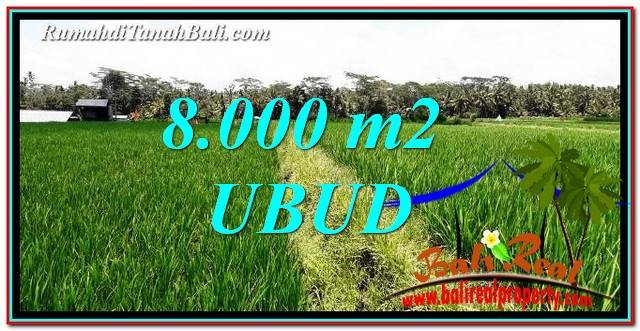 Exotic LAND FOR SALE IN UBUD TJUB763
