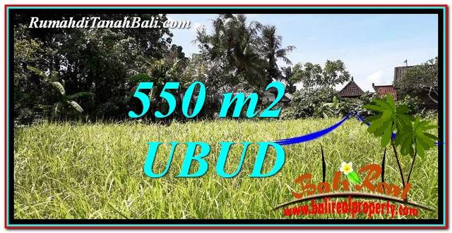 Beautiful PROPERTY 550 m2 LAND IN Sentral Ubud BALI FOR SALE TJUB766