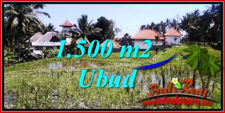 Beautiful 1,500 m2 LAND SALE IN Ubud Tegalalang TJUB744