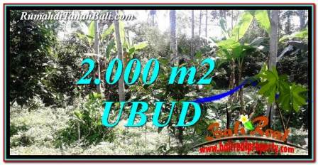 Affordable PROPERTY 2,000 m2 LAND IN Ubud Tegalalang FOR SALE TJUB747