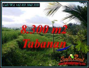 Beautiful LAND SALE IN TABANAN BALI TJTB501