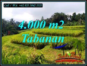 Beautiful PROPERTY LAND SALE IN PENEBEL TABANAN TJTB499A