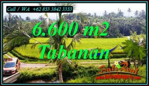 FOR SALE Exotic LAND IN TABANAN BALI TJTB499C