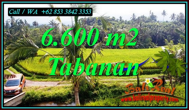 Magnificent LAND FOR SALE IN PENEBEL TABANAN TJTB499C