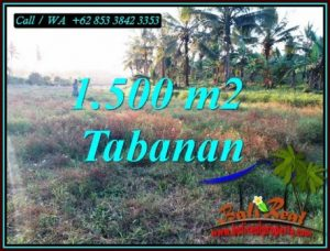 Magnificent LAND IN SELEMADEG BARAT FOR SALE TJTB497