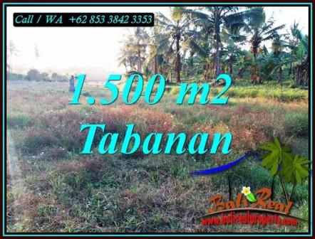 Exotic LAND FOR SALE IN SELEMADEG BARAT BALI TJTB497