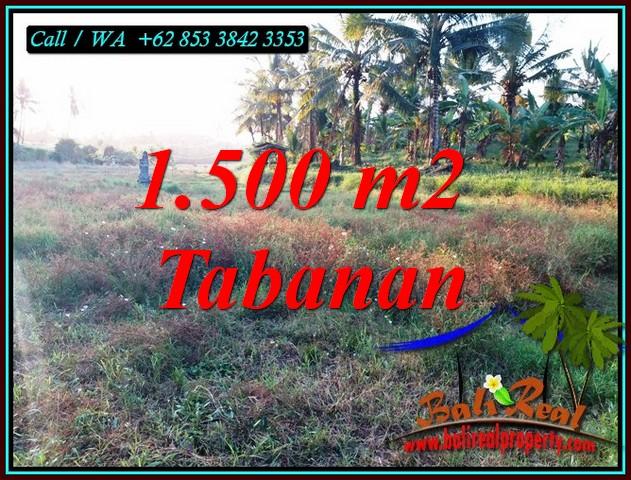 LAND SALE IN TABANAN BALI TJTB497