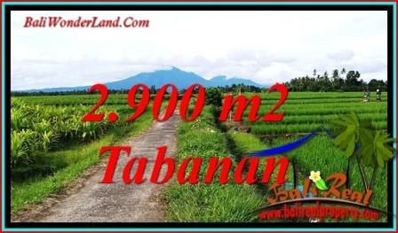 Cheap property LAND SALE IN SELEMADEG TJTB484