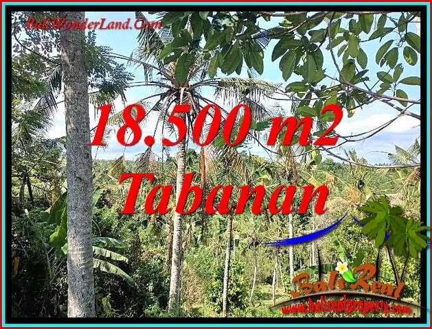 FOR SALE Affordable 18,500 m2 LAND IN SELEMADEG BARAT TJTB487