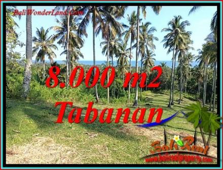 FOR SALE Beautiful 8,000 m2 LAND IN SELEMADEG BARAT BALI TJTB488