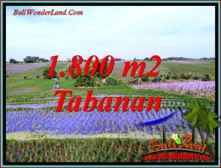 Beautiful KERAMBITAN TABANAN LAND FOR SALE TJTB491