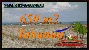 Affordable LAND FOR SALE IN TABANAN BALI TJTB453
