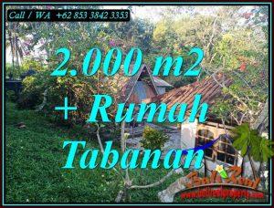 Beautiful SELEMADEG TABANAN BALI 2,000 m2 LAND FOR SALE TJTB455