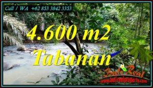 FOR SALE Beautiful 4,600 m2 LAND IN MEGATI BALI TJTB473