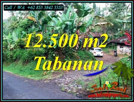 12,000 m2 LAND SALE IN SELEMADEG BARAT BALI TJTB475