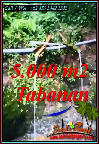 PENEBEL BALI 5,000 m2 LAND FOR SALE TJTB476