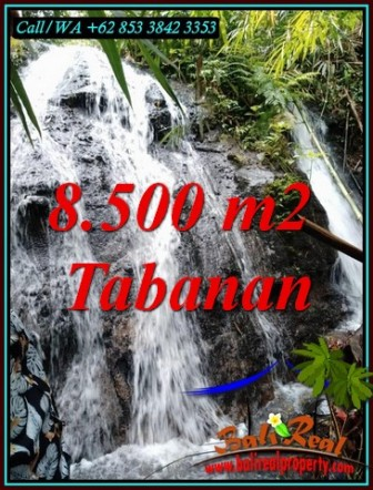 Cheap property LAND IN SELEMADEG FOR SALE TJTB478