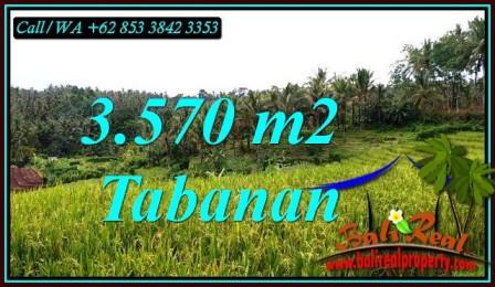 Beautiful PROPERTY 3,570 m2 LAND FOR SALE IN TABANAN TJTB482